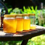 Mierea de salcâm – beneficii preţioase pentru sănătate
