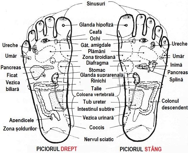 Artrita talpa piciorului poze