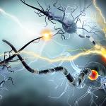 Primul ajutor in caz de epilepsie