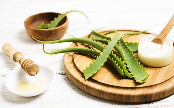 Aloe vera pentru piele