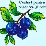 Ceaiuri pentru scaderea glicemiei