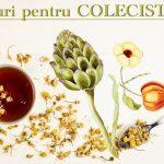 Ceaiuri pentru colecistita