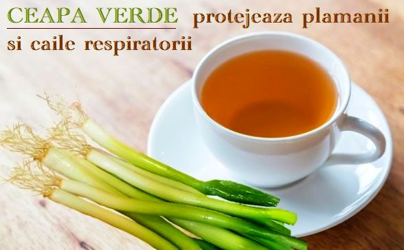 Ceapa verde antibiotic si antiviral natural