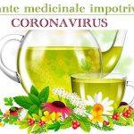 Plante medicinale Coronavirus