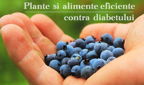 Plante si alimente utile in diabet