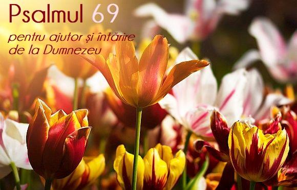 Psalmul 69