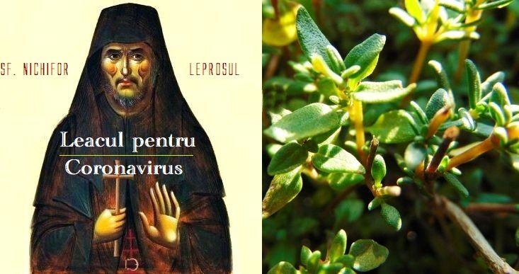 Sfantul Nichifor Leprosul - leacul pentru Coronavirus