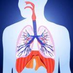 Remedii sistemul respirator