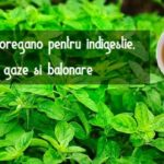 Ceai de oregano digestie