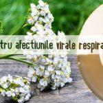 Ceai pentru afectiunile virale respiratorii