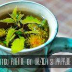 Ceai pentru anemie din papadie si urzica