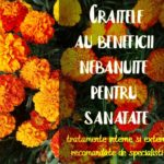 Craite beneficii