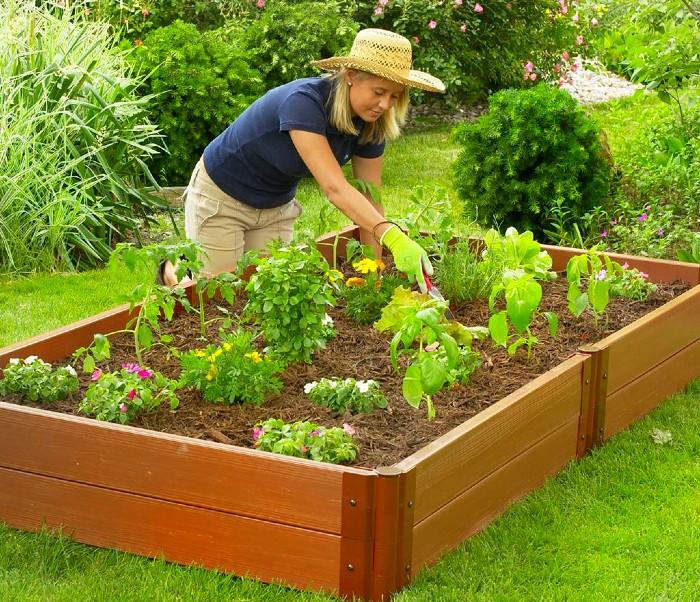 Paturi de legume