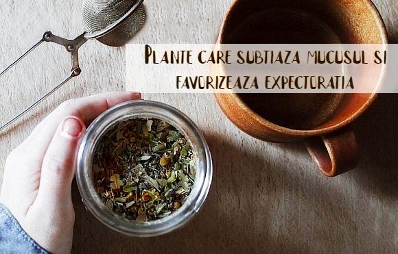 Plante care subtiaza mucusul