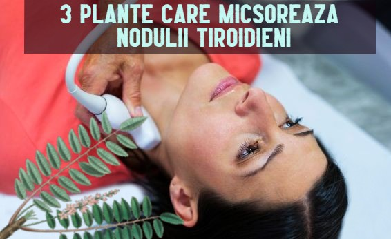 Tratament naturist noduli tiroida