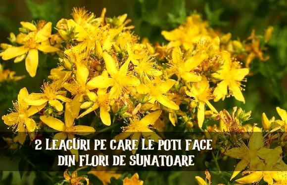 Leacuri din flori de sunatoare