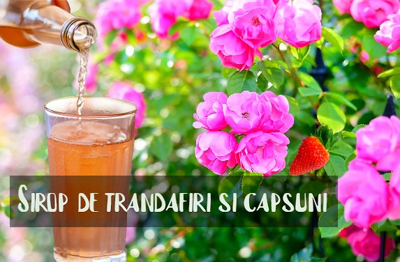 Sirop de trandafiri si capsuni