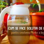 Solutie de drodjie pentru flori si legume