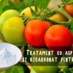 Tratament cu bicarbonat si aspirina pentru rosii