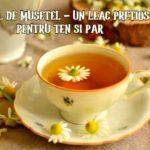 Ceai de musetel pentru piele si par