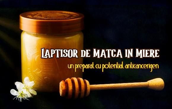 Laptisor de matca in miere