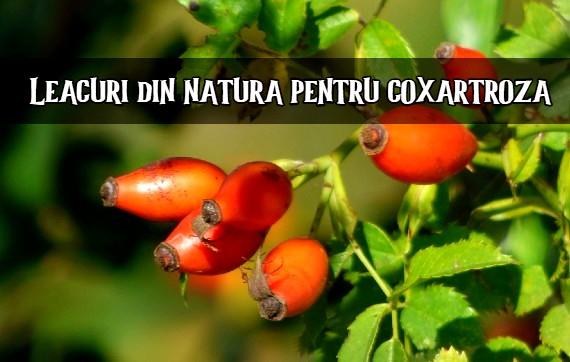 Remediu naturist pentru Coxartroza cu produse naturale Calivita