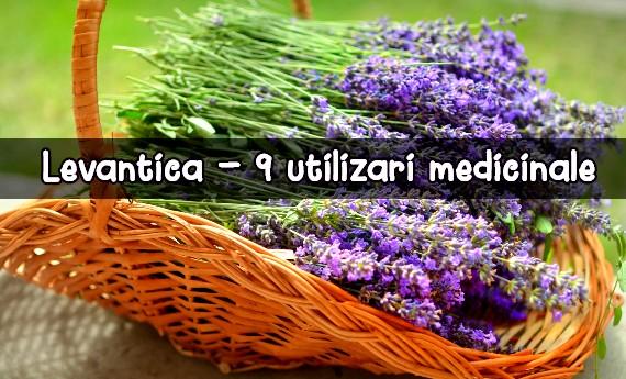 levantica - 9 utilizari medicinale