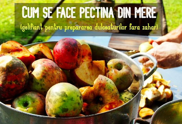 Pectina din mere reteta