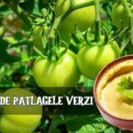 Salata de patlagele verzi
