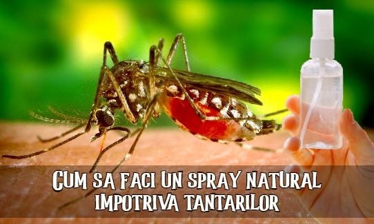 Spray natural impotriva tantarilor
