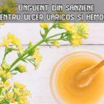 Unguent de sanziene pentru ulcer varicos si hemoroizi