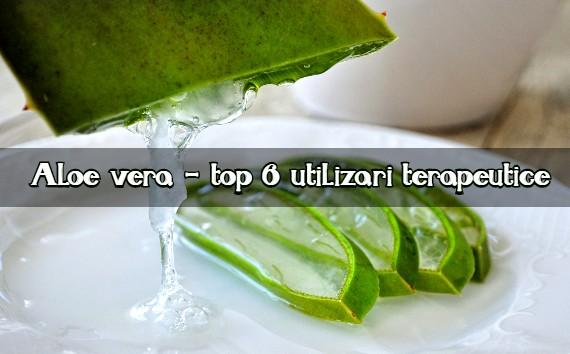 Aloe vera top 6 utilizari