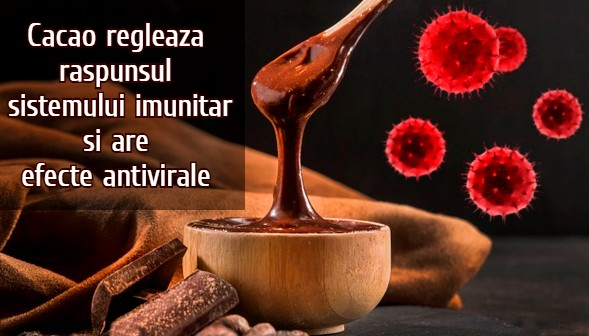 Cacao are efecte antivirale