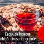 Ceaiul de hibiscus inhiba virusurile gripale