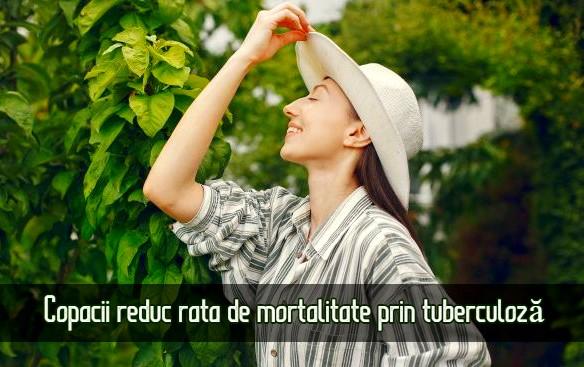 Copacii reduc rata de mortalitate prin tuberculoza