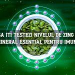 Cum să iti testezi nivelul de zinc acasa