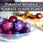 Purgative naturale (alimente, ceaiuri, plante)