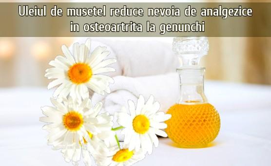 Uleiul de musetel reduce nevoia de analgezice in osteoartrita la genunchi