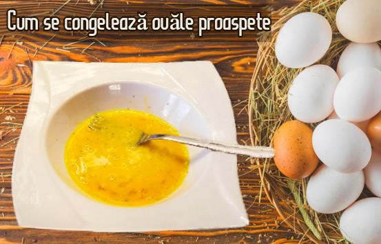 <a href='https://www.freepik.com/photos/background'>Background photo created by freepik - www.freepik.com</a>