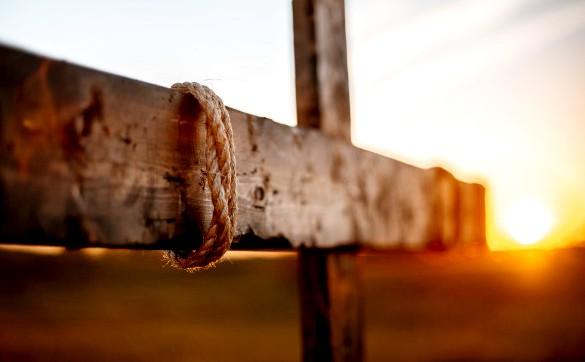 De ce ingaduie Dumnezeu sa fim ispititi