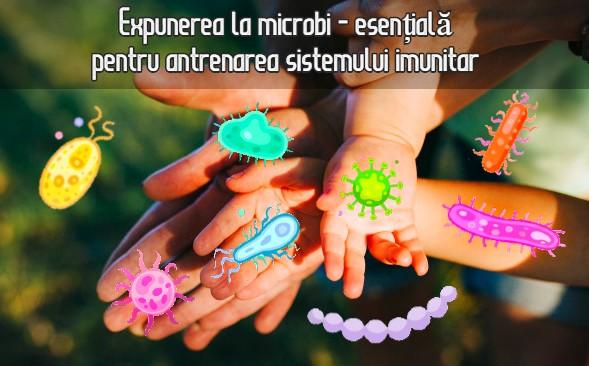 Expunerea la microbi esentiala pentru antrenarea sistemului imunitar
