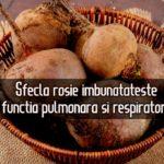 Sfecla rosie imbunatateste functia pulmonara si respiratorie