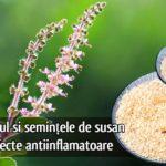 Busuiocul si semintele de susan au efecte antiinflamatoare