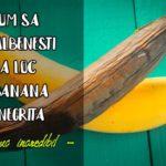Cum sa readuci la viata o banana neagra