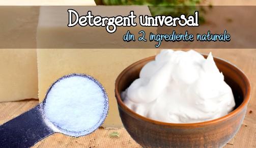 Detergent universal din 2 ingrediente naturale