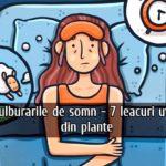 Tulburarile de somn - 7 leacuri utile din plante