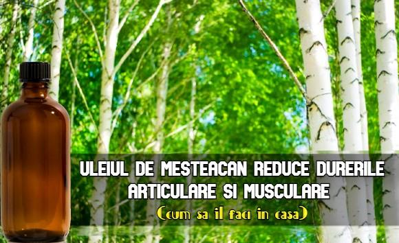 Ulei de mesteacan pentru dureri articulare si musculare
