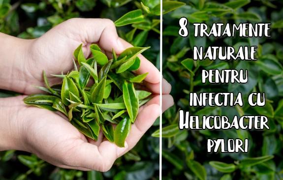 8 tratamente naturale pentru Helicobacter pylori