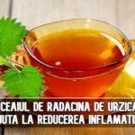 Ceaiul de radacina de urzica ajuta la reducerea inflamatiilor