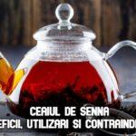 Ceaiul de senna – beneficii, utilizari si contraindicatii
